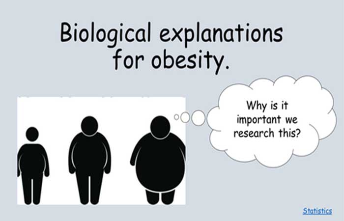 The Behavioral Explanations of Obesity